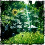 Chaumont Garden 2 - Sculptillonnage